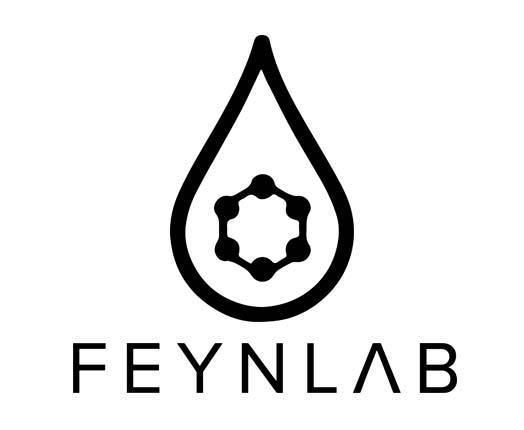 feynlab car coating